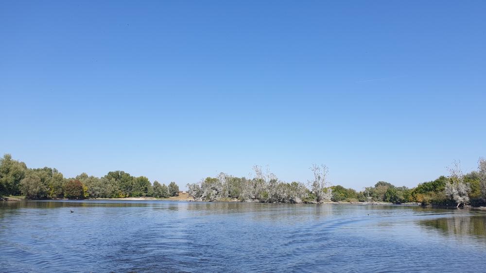 Jezero Veliki Sakadaš, Kopački rit