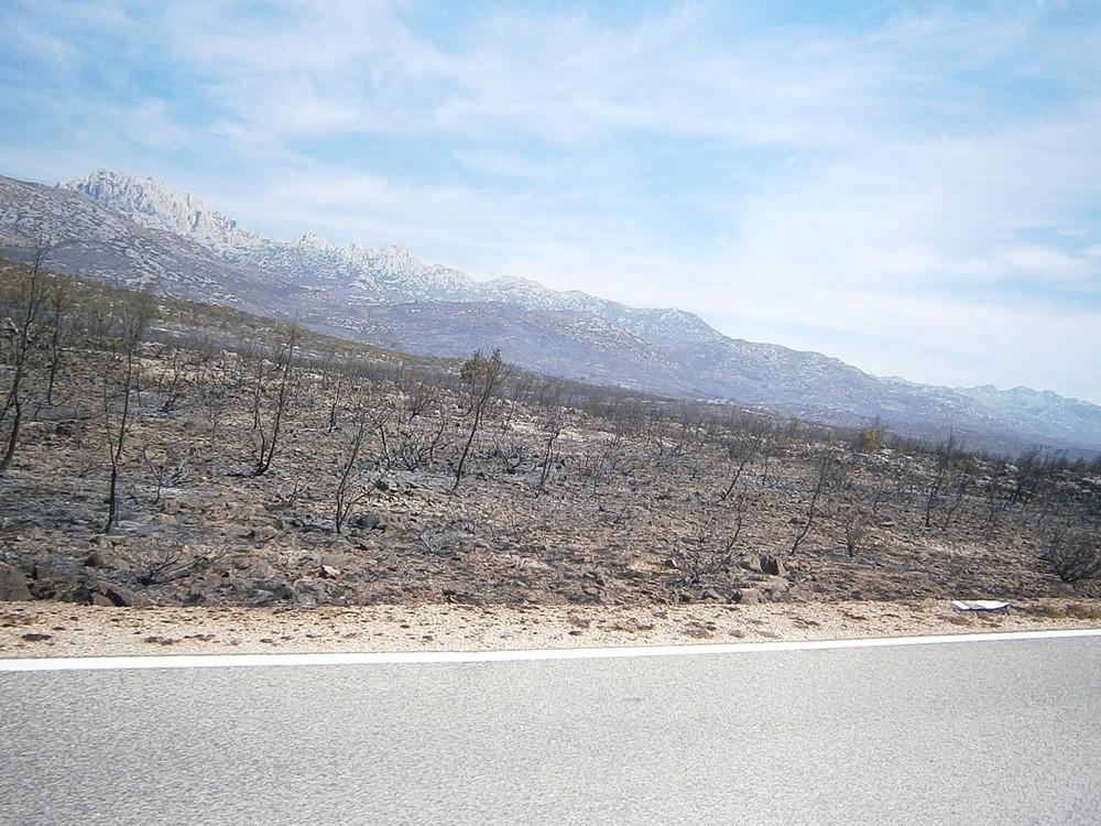 Zgarište velikog požara, u pozadini moćni Velebit.